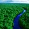 Amazonas_5_2051316_1471_s