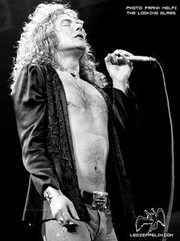 Led Zeppelin 12