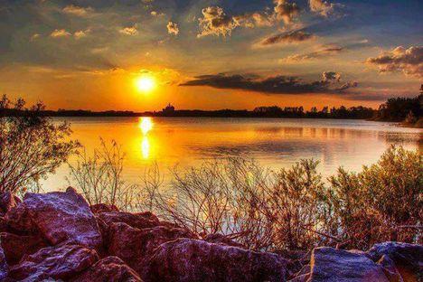 Elbúcsúzott az ősz..Dáma Lovag Erdős Anna verse