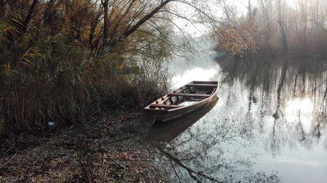 Ősz a Mosoni-Dunánál, Halászi 2017. november 23 .-án