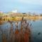 Késői ősz a Báger tónál, Mosonmagyaróvár 2017. november 28.-án
