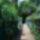 Rácz Móni-Veresegyházi tó