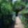 Veresegyházi tó -Rácz Móni