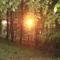 """2009 . május 27.  Gorb  a hegyen .....a  Nap                                                                                 """" Nap ...és  amit  gondolsz ....??? í!!!!"""
