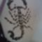 scorpion- 06.12.