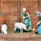 Betlehem Gönyűn - 2017 Karácsony
