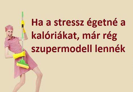 Stressz!