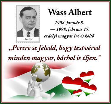 Wass Albert