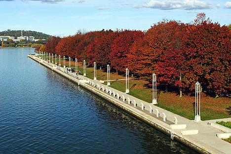 Burley Griffin tó