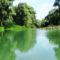 Iparosi Duna-ág Szigetközi hullámtéri vízpótlórendszerben, Lipót 2016. július 15.-én 1