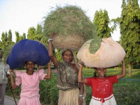 Saranath: nők viszik a fejükön az árut