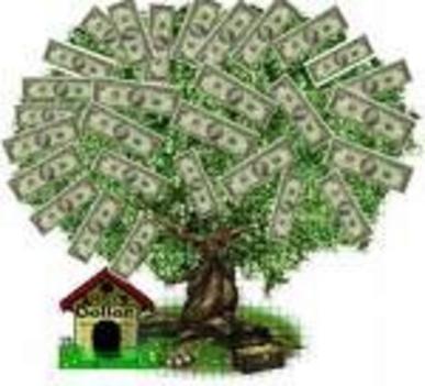 sok pénz fa