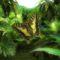 86d4d6a71de36542cb85c0d9079ecec2_Butterfly_Jungle_3D_Screensaver