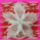 Kitűző Fehér opál kásagyöngyből néhány Miyuki delica díszítéssel