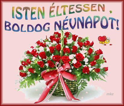 Rádiné Zsuzsikát ,szeretettel köszöntöm,Isten éltessen ,boldog névnapot!
