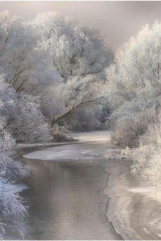 Újra tombol a tél..: Dáma Lovag Erdős Anna verse: