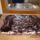 márványos diókrémes meggyes egészben