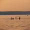 Mappa-A Balaton naplementéje-horgászokkal 009