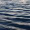Mappa-A Balaton naplementéje-horgászokkal 085