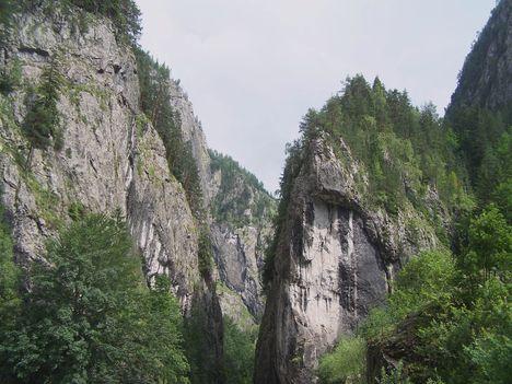 Erdély, 2006 nyara