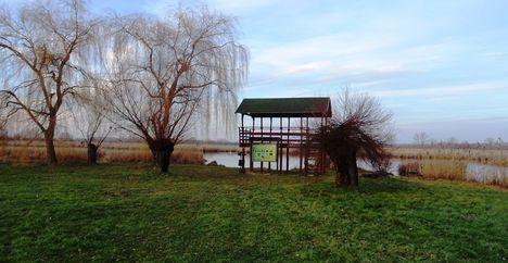 A Holt-Duna melletti, sziget ma is szép dísze a településnek, Lipót, 2017. december 31.-én