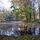 Alcsútdoboz - Arborétum