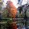 Alcsútdoboz Arborétum 031_edited