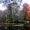 Alcsútdoboz Arborétum 032_edited
