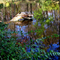 Alcsútdoboz Arborétum 035_edited