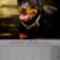 Rottweiler__februar_2060766_5869_s