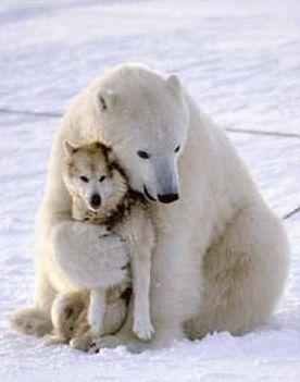 Szeressük egymást gyerekek......