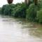 A Duna Gönyűnél 11