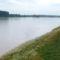 A Duna Gönyűnél 6