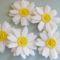 Virágok másképp  9