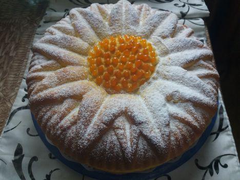 citromos ízű napraforgó