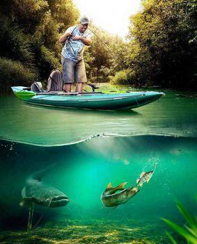 Hobbim a horgászat
