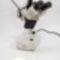 IND-2D ipari sztereo mikroszkóp okulár