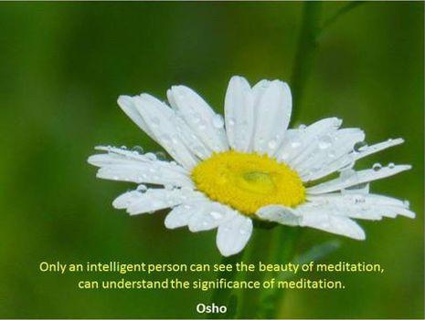 """""""Csak egy intelligens személy láthatja meg a meditáció szépségét..."""