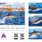 Delfinek és bálnák