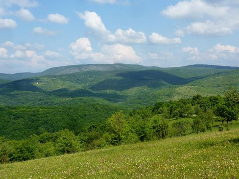 Kilátás a Jósva-völgy irányába