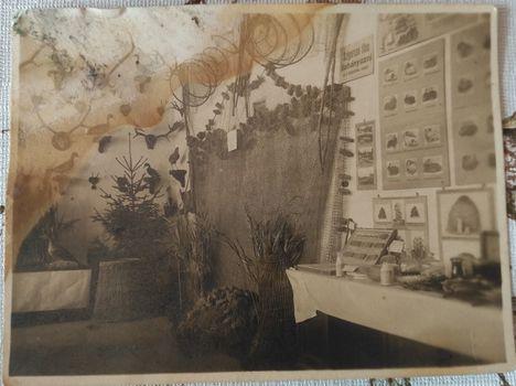 1924. kiállítás