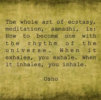 """""""Az eksztázis minden művészete, meditáció, szamádhi az annyi, hogy hogyan..."""