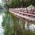 Csónak és kajak-kenu kikötő