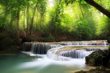 Erdőnél fátyol vízesés