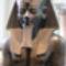 Iii_amenhotep-005_2081802_2111_s