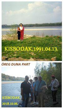Kisbodak,  öreg Duna part 1991-2018
