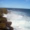 Royal National Park 23