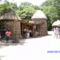 Bronx Zoo 042