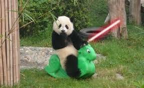 Jedi panda