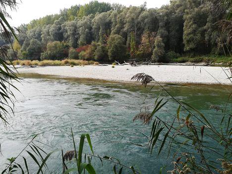 Kavicspad (zátony) a Kisvesszősi Duna-ágon a Tábori útnál, Kisbodak 2018. október 16.-án 1
